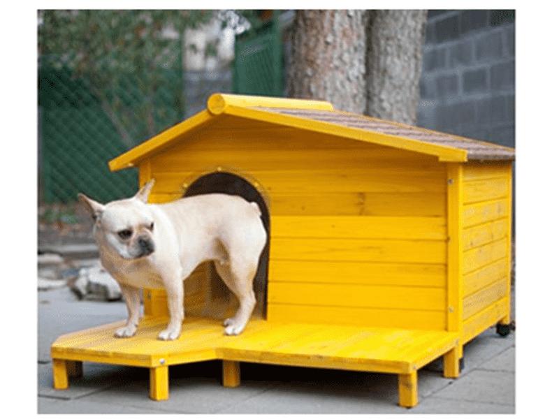 Các mẫu chuồng và nhà cho chó