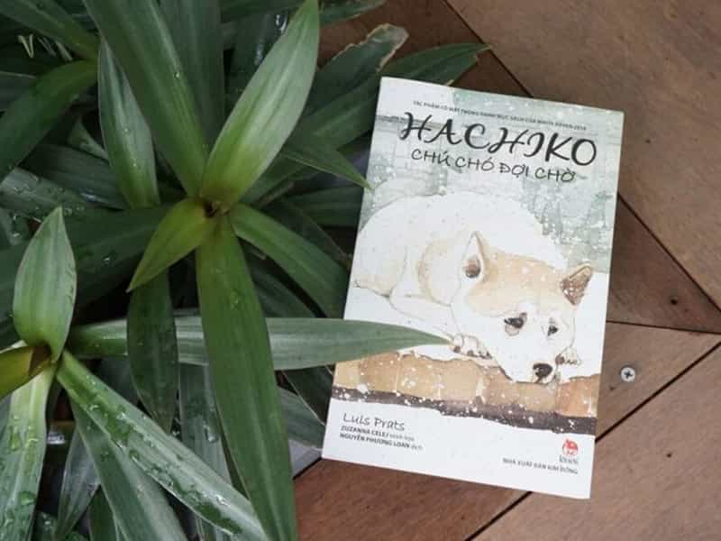 Câu chuyện về chú chó HachiKo